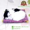 ตุ๊กตาแมวเหมือนจริงนอนหลับ สีขาวดำ 17x20 CM