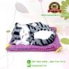 ตุ๊กตาแมวเหมือนจริงนอนหลับ สีเทาดำ 17x20 CM