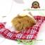ตุ๊กตาแมวเหมือนจริงนอนหลับ สีเหลือง 14x17 CM thumbnail 4