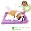 ตุ๊กตาหมาเหมือนจริงนอนหลับบนเบาะ สีเหลือง 25x30 CM thumbnail 1