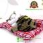 ตุ๊กตาแมวเหมือนจริงนอนหลับ สีเหลืองดำ 14x17 CM thumbnail 3