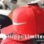 Nike Swoosh Pro Snapback - Red thumbnail 2