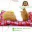 ตุ๊กตาแมวเหมือนจริงนอนหลับ สีเหลือง 14x17 CM thumbnail 5