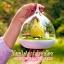 โคมไฟกระต่ายน้อย สุดน่ารัก เปิดปิดระบบสัมผัส สีส้ม thumbnail 8