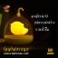Lovely Birdcage Lamp โคมไฟกรงนก เปิดปิดระบบสัมผัส สีส้ม thumbnail 3