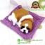 ตุ๊กตาหมาเหมือนจริงนอนหลับบนเบาะ สีเหลือง 25x30 CM thumbnail 6