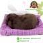 ตุ๊กตาหมาเหมือนจริงนอนหลับบนเบาะ สีน้ำตาล 25x30 CM thumbnail 4