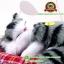 ตุ๊กตาแมวเหมือนจริงนอนหลับ สีเทาดำ 14x17 CM thumbnail 6
