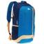 Quechua Daypack 20 L - Blue