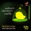 Lovely Birdcage Lamp โคมไฟกรงนก เปิดปิดระบบสัมผัส สีเหลือง thumbnail 3