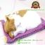 ตุ๊กตาแมวเหมือนจริงนอนหลับ สีขาวเหลือง 17x20 CM thumbnail 5
