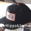 Thrasher Scarred 4 Life Snapback Hat thumbnail 2