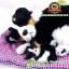 ตุ๊กตาหมาเหมือนจริงนอนหลับบนเบาะกับลูก สีดำ 25x30 CM thumbnail 6