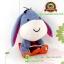 ตุ๊กตา Cutie EeYore Snowboard 9 นิ้ว [Disney] thumbnail 2