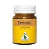 เซอร์มินอล (CERMINAL)