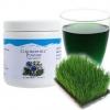Super Chlorophyll คลอโรฟิลล์พาวเดอร์ ของยูนิซิตี้ ของแท้ คอลโลฟิลล์ราคาถูก