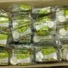 G311-1 ชุดเล็ก Botaya Herb สมุนไพรสูตรมหัศจรรย์ โบทาย่า เฮิร์บ Botaya Herb (BH) ครีมสมุนไพรสูตรมหัศจรรย์