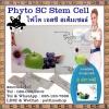 Phyto SC Stem Cell : ไฟโต เอสซี สเต็มเซลล์ นวัตกรรมผสานพลังจากธรรมชาติ คืนร่างกายสู่วัยหนุ่มสาว กระชากวัยต้านความชรา ขจัดความเสื่อมลึกถึงระดับเซลล์