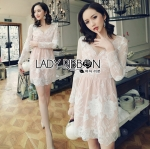 Lady Sasha Sexy Elegant Flower Embroidered Lace Dress