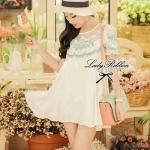 Lady Blue Blossom Embroidery Mini dress