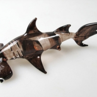 ปลาฉลาม Shark