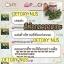 (ส่งฟรีEMS)Detoxy By Nus ดีท็อกซี่ ล้างสารพิษ thumbnail 66