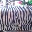 กระเป๋าลายเสือ ทรงกล่อง thumbnail 1