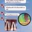 ส่งฟรีEMS(แบบขวดปั๊ม)OMO White Body Lotion โอโม่ไวท์ by กําไร thumbnail 12