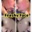 (ส่งฟรีEMS)Freshy Face Gold Set ครีมถุงทองหน้าใส thumbnail 100